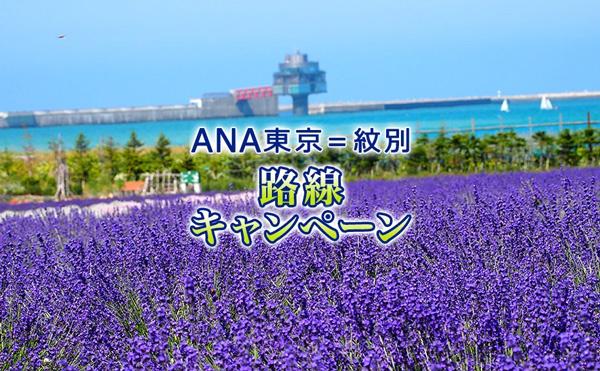 ANA東京=紋別 路線キャンペーン